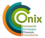 Consultora Onix