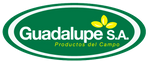 GUADALUPE S.A.