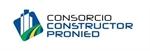 CONSORCIO CONSTRUCTOR PRONIED